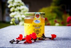 Sliabh Aughty Honey at the Burren Slow Food Festival